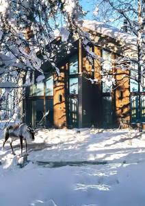 Nova Skyland Hotel during the winter