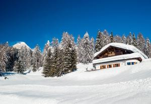 Hotel Piccolo Pocol en invierno