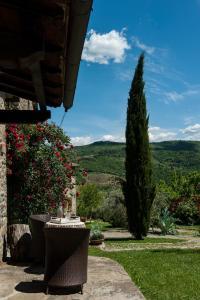 A patio or other outdoor area at Agriturismo Azienda Agricola Il Pozzo