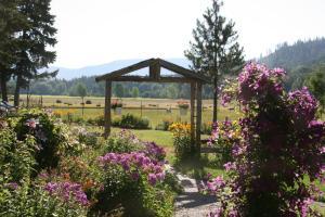A garden outside Cedar Mountain Farm Bed and Breakfast LLC