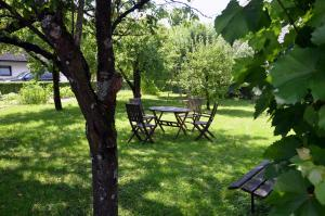 Vonkajšia záhrada v ubytovaní Apartments Lenardic