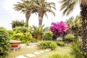 A garden outside Villa Eden B&B