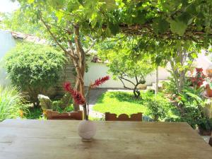 Сад в La Castiza