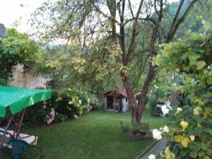 A garden outside Pension Casa Anadam