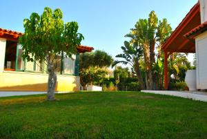 Сад в Ariadni Apartments