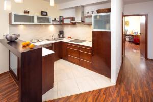 Kuchnia lub aneks kuchenny w obiekcie Apartament Park
