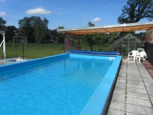 Der Swimmingpool an oder in der Nähe von Pension Lippert
