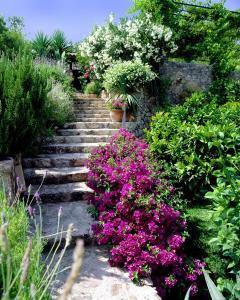 A garden outside Can Verdera