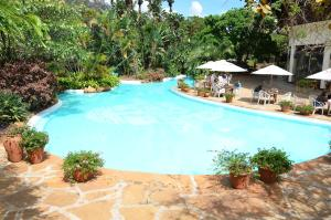 The swimming pool at or close to Safari Park Hotel