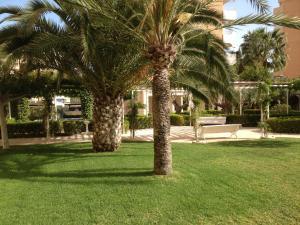 A garden outside Apartment Playa San Juan