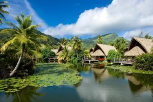 The swimming pool at or near Maitai Lapita Village Huahine