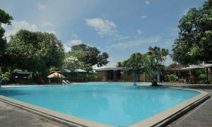 The swimming pool at or close to Jazz Hotel Palu