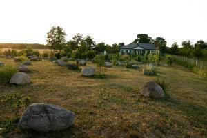 Ogród w obiekcie Bumerang Jolanta Foks