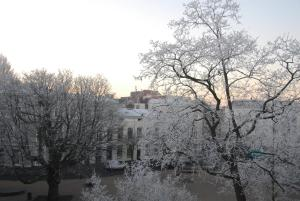 Treetop Apartment during the winter