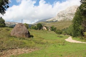 Natural landscape near the farm stay