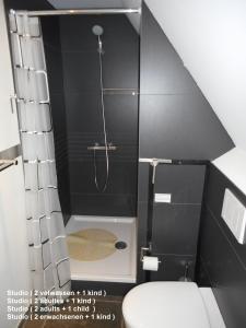 A bathroom at Residentie Delta