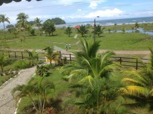 A garden outside Hotel Nuquimar