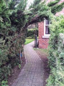 A garden outside Bed and Breakfast Ashfield