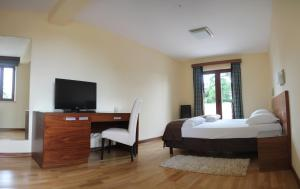 A television and/or entertainment centre at Bed and breakfast Villa Dobravac