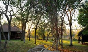Un jardín fuera de Idube Game Reserve