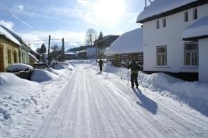 Chalupa Borovnice зимой