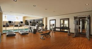 The fitness centre and/or fitness facilities at Hilton Jaipur