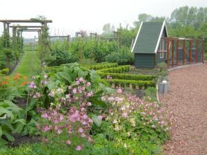 A garden outside B&B ZomersBuiten