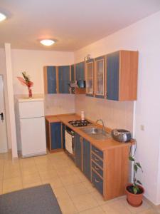 A kitchen or kitchenette at Apartment Kiko