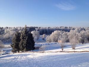 Валеско зимой