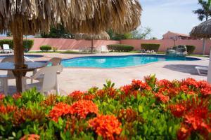 A piscina localizada em Sasaki Apartments ou nos arredores