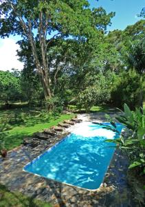 The swimming pool at or near Rivertrees Country Inn
