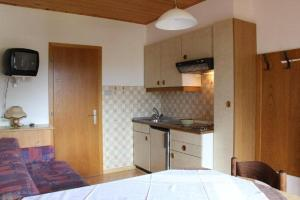 A kitchen or kitchenette at Apparthotel Germania