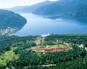 A bird's-eye view of Hakone Lake Hotel