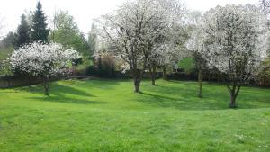 A garden outside Hotel Villa Falkenberg