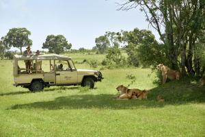 Mascotas con sus dueños en Fairmont Mara Safari Club