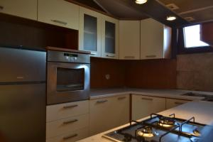 A kitchen or kitchenette at Apartment Peloža 1