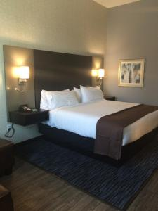 A bed or beds in a room at Holiday Inn Carlsbad/San Diego, an IHG Hotel
