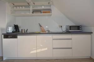 A kitchen or kitchenette at Poduszka Apartamenty Zielony Dom