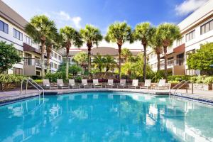The swimming pool at or near Sheraton Suites Orlando Airport Hotel