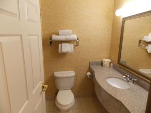 A bathroom at Holiday Inn Express Syracuse-Fairgrounds, an IHG Hotel