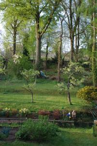 A garden outside Les Bleuets