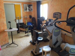 Fitness centrum a/nebo fitness zařízení v ubytování Hotel Ariston