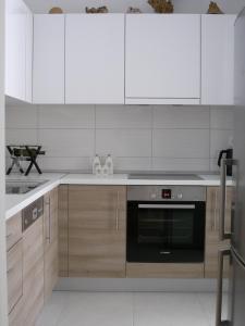 Kuhinja ili čajna kuhinja u objektu Momentum Apartment