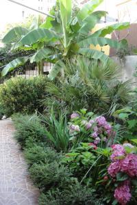 Сад в Отель Машук