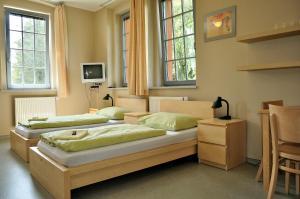 Postel nebo postele na pokoji v ubytování Hostel Lípa - Továrna