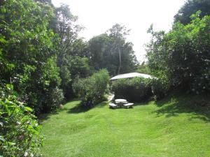 Jardín al aire libre en Hospedaje Mariposa
