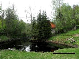 Сад в Гостевой дом Андреевщина
