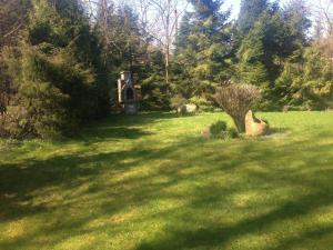 Ogród w obiekcie Dom Letni Kopalino