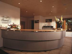 Hall ou réception de l'établissement Hotel du Pigne