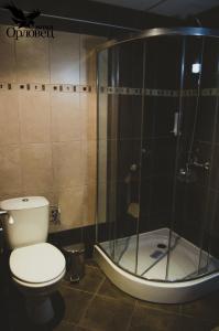 A bathroom at Hotel Orlovetz